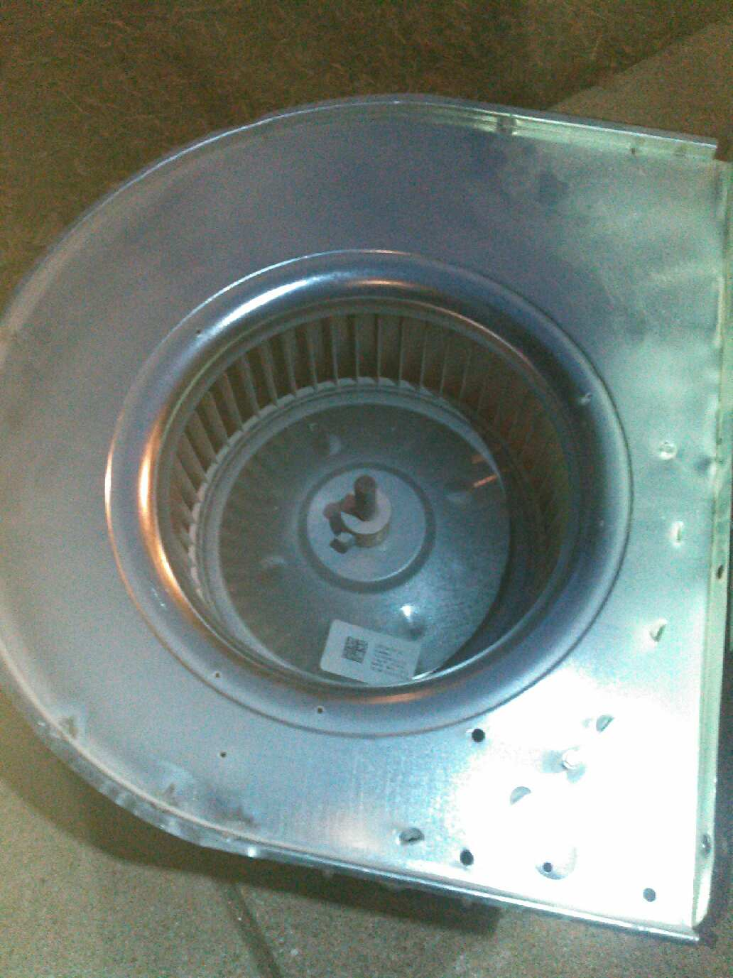 Blower wheel after cleaning